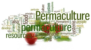 alba_permaculture_wordcloud