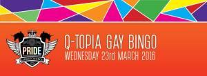 Q-topia gay bingo