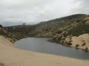 Waiora Ngatuna