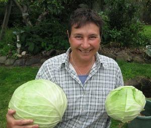 LR cabbages